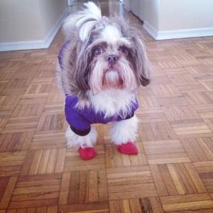 De casaco e botas de inverno